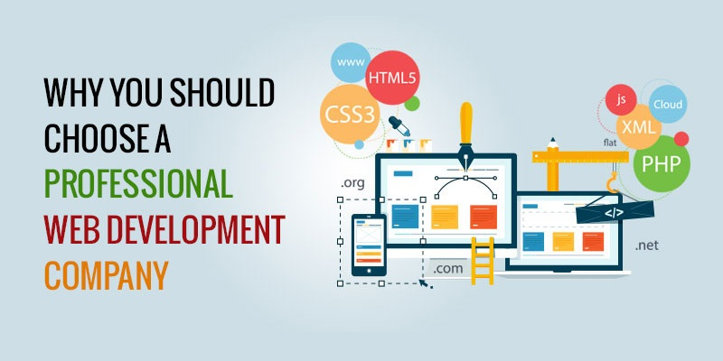Why its Significant to Choose the Right Web Designer & Professional Web Development Company